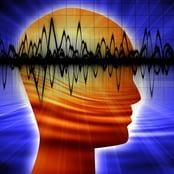 bigstock-Human-Head-Silhouette-6554479