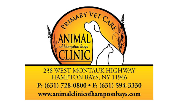Animal Clinic of Hampton Bays Logo