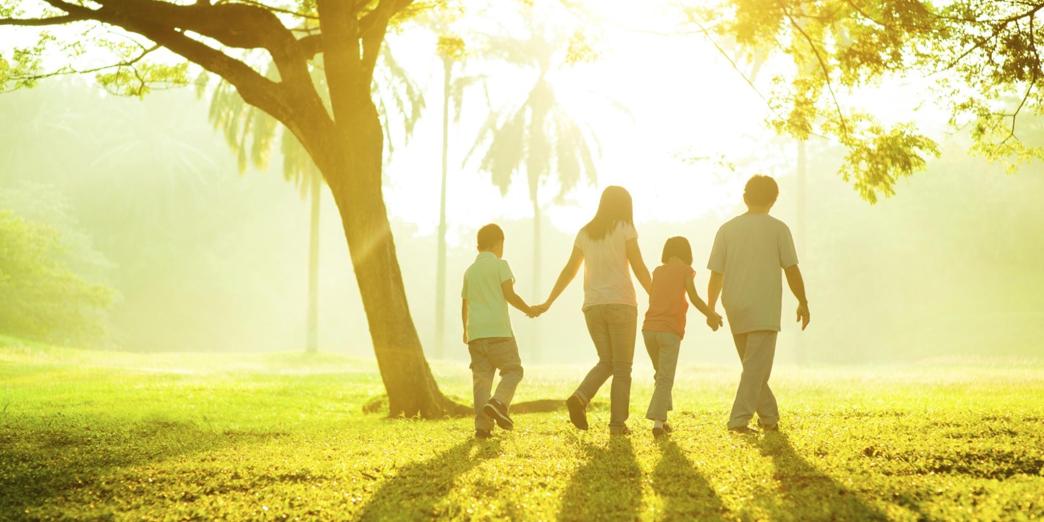 Family Wellness Hero