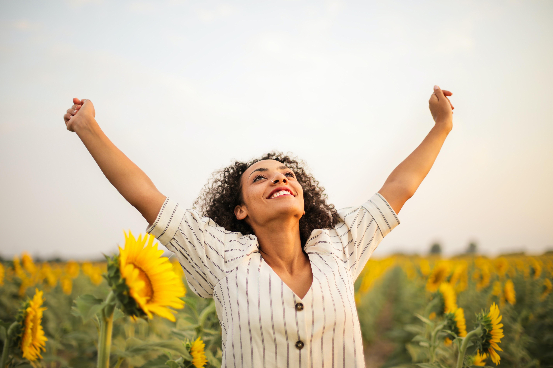 sunflowersuccess